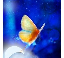 the giant butterfly and the moon Photographic Print