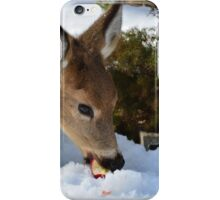 """For the birds - Upstate NY"" iPhone Case/Skin"