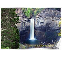 Taughannock gorge  Poster