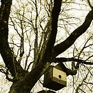 Tree House by Zolton