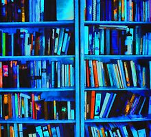 Blue Book Shelves by bloomingvine