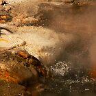 Thermal Pool  by Olga Zvereva