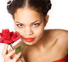 Red Rose by VioDeSign