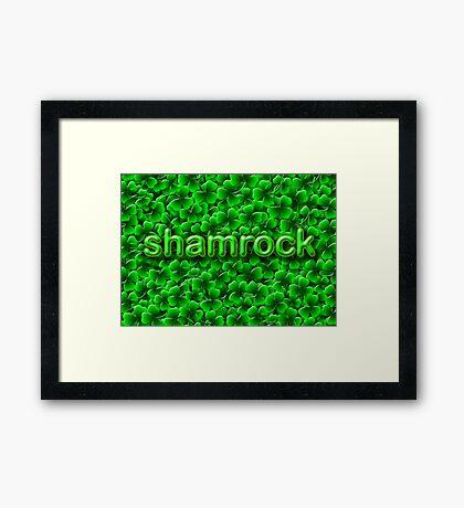 A Bed of Shamrock Framed Print