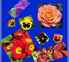 Crazy Summer Flowers Collage by Kathryn Jones