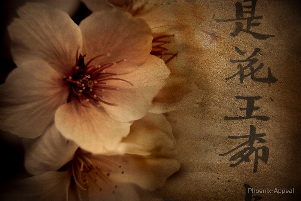 Asian Blossom by Phoenix-Appeal