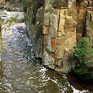 Rose's Rocks & Pulpit Rock by David Henderson
