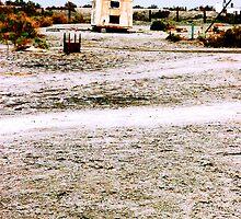 Desolate by Shawn Jones