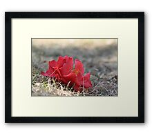 earth wind and fire Framed Print