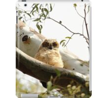 Cute Furry Owl  iPad Case/Skin
