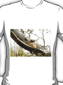 Cute Furry Owl  T-Shirt