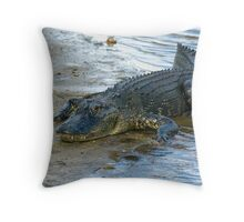 It's My Mudflats Throw Pillow