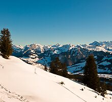 winter scene in swiss alps by peterwey