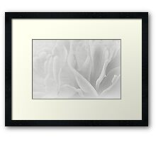 Modern Art Smart Stylish Wall Art Mono Flower Bloom Framed Print