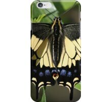 A Swallow's Art iPhone Case/Skin