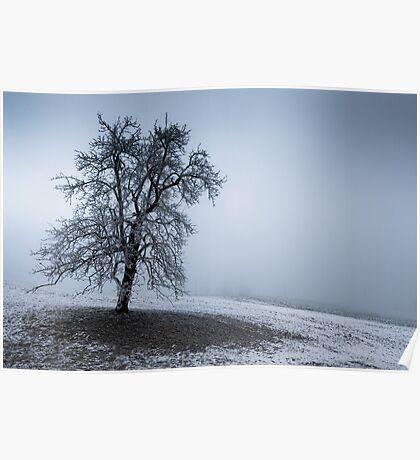 dark winter tree Poster