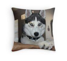 Look at me... Throw Pillow