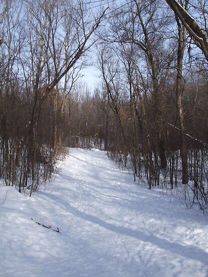 snow scene by sianteri