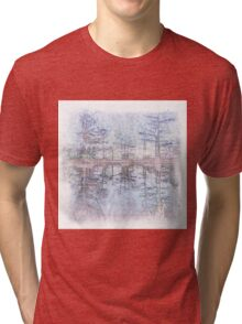 The Atlas Of Dreams - Color Plate 45 Tri-blend T-Shirt