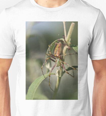 Beautifully Scary Spider Unisex T-Shirt