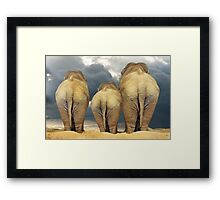 Traveling Elephant Family  Framed Print