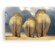 Traveling Elephant Family  Canvas Print