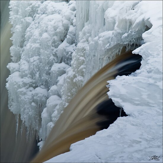 Water and Ice by Theodore Black
