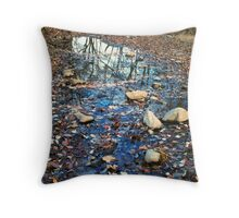 CREEK, CADES COVE, GREAT SMOKY MOUNTAINS NP Throw Pillow
