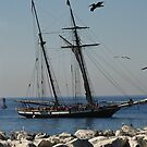 Tall ship by Bellavista2