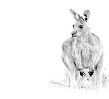 Spirit of Australia by Phoenix-Appeal