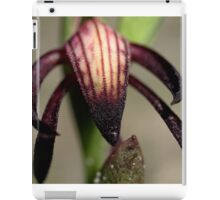 Pyrorchis Nigricans  iPad Case/Skin