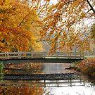 Crossing the autumn bridge by jchanders