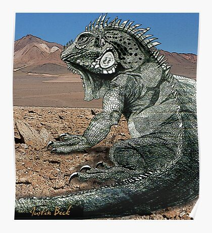 Desert Iguana Justin Beck Picture 2015096 Poster