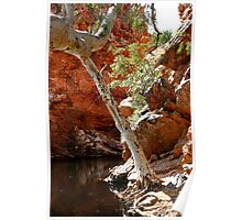 West Macdonnell Ranges XII Poster