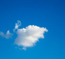 A Single Cloud by Eric Christopher Jackson