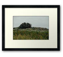 Windy knoll. Framed Print