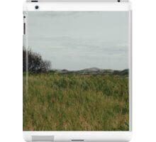 Landscape IIV iPad Case/Skin