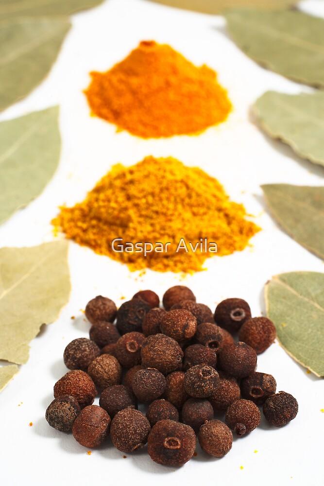 Spices by Gaspar Avila