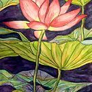 Lily/Lotus - Watercolour Pencil by Alexandra Felgate