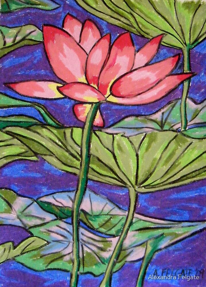 Lily/Lotus - in oil pastel by Alexandra Felgate