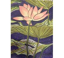 Lily/Lotus - in Pastel Photographic Print