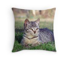 """""""pritty kitty"""" Throw Pillow"""