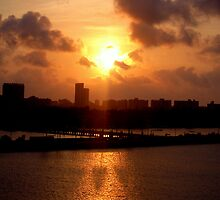 Miami Sunset by Stephy