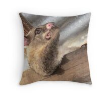 Grumbles 4 Throw Pillow