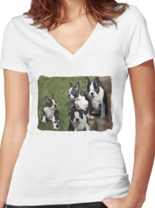 Boston Terrier Puppies... T Women's Fitted V-Neck T-Shirt