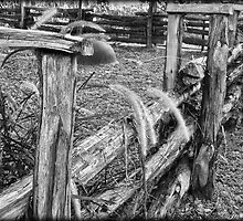 Old Fence by Jonathan Garrett