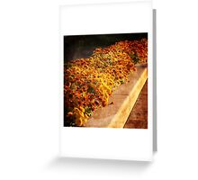Golden Time of The Day Greeting Card