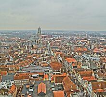Birdseye view of Bruges by DES PALMER