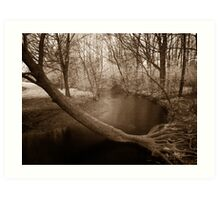 Infrared Springtime at Laurel Creek, Waterloo Art Print