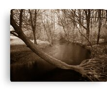 Infrared Springtime at Laurel Creek, Waterloo Canvas Print